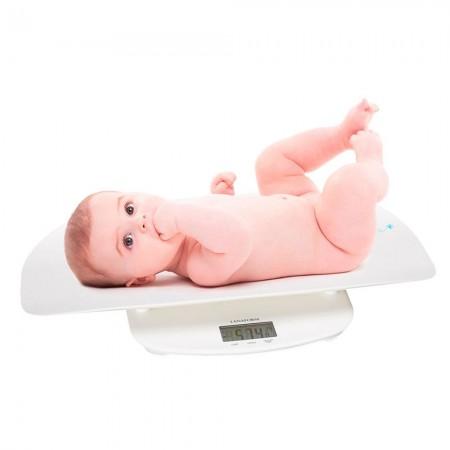 Cantar electronic pentru bebelusi Evolutive LA090326 Lanaform