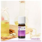 Ulei organic cu aroma de lavanda pentru camera Lanaform